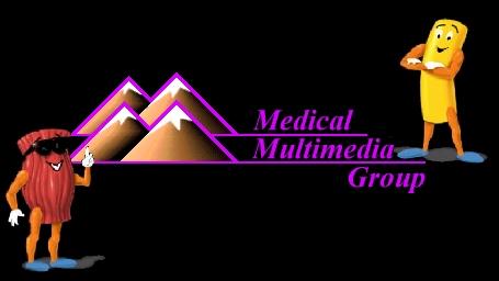 Medical Multimedia Group